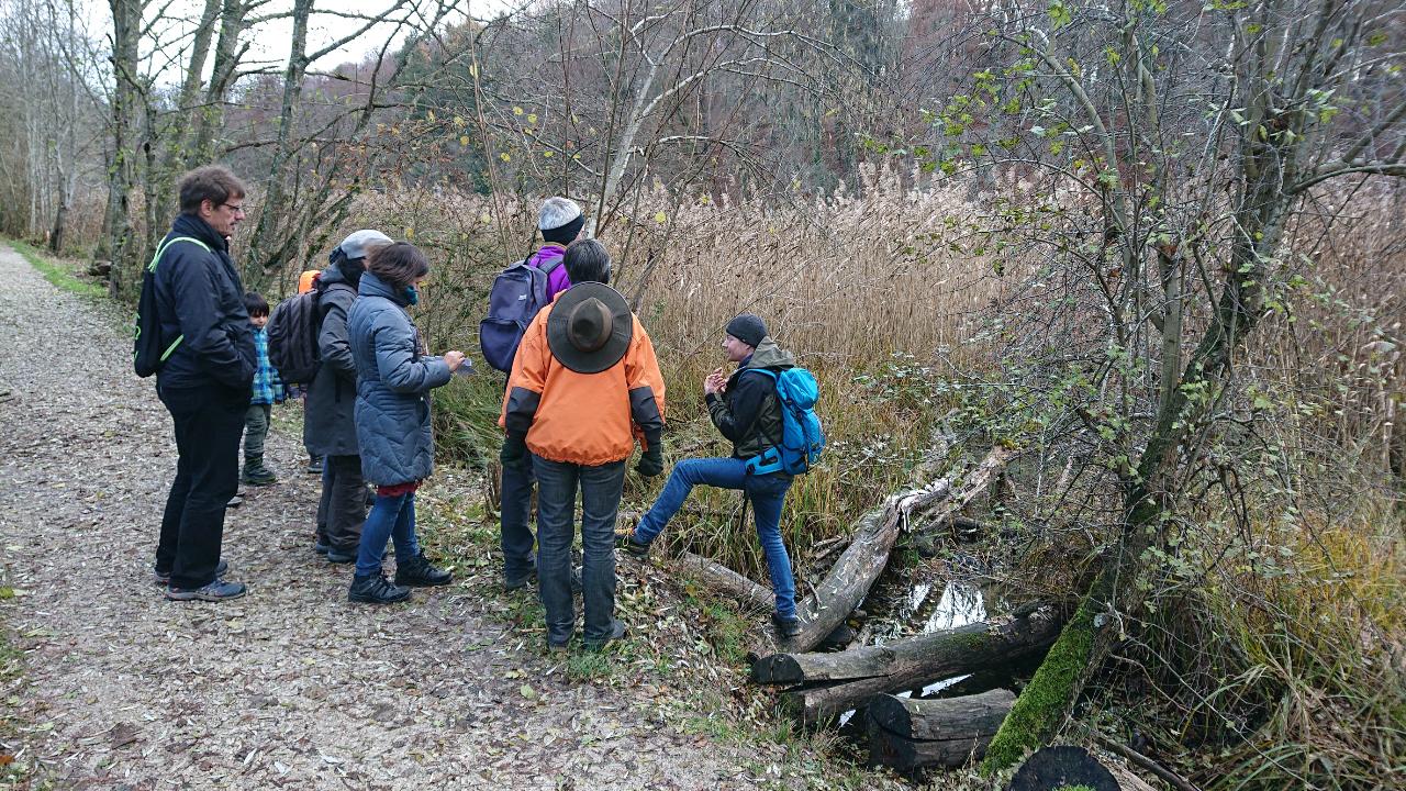 Biberexkursion 2019 - Schutzverband Wohlensee